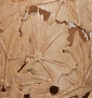 Bill_Schlief_vase_beech_carved_maple_leaves_closeup_6986